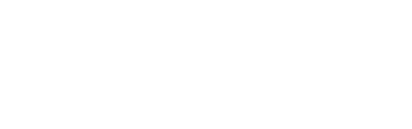 LOGO AEI IS